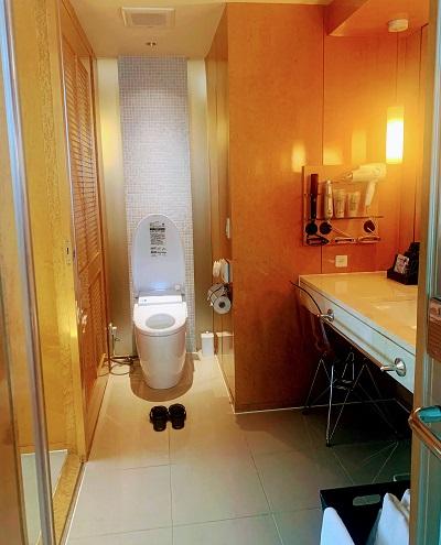 アペルト401号室トイレ
